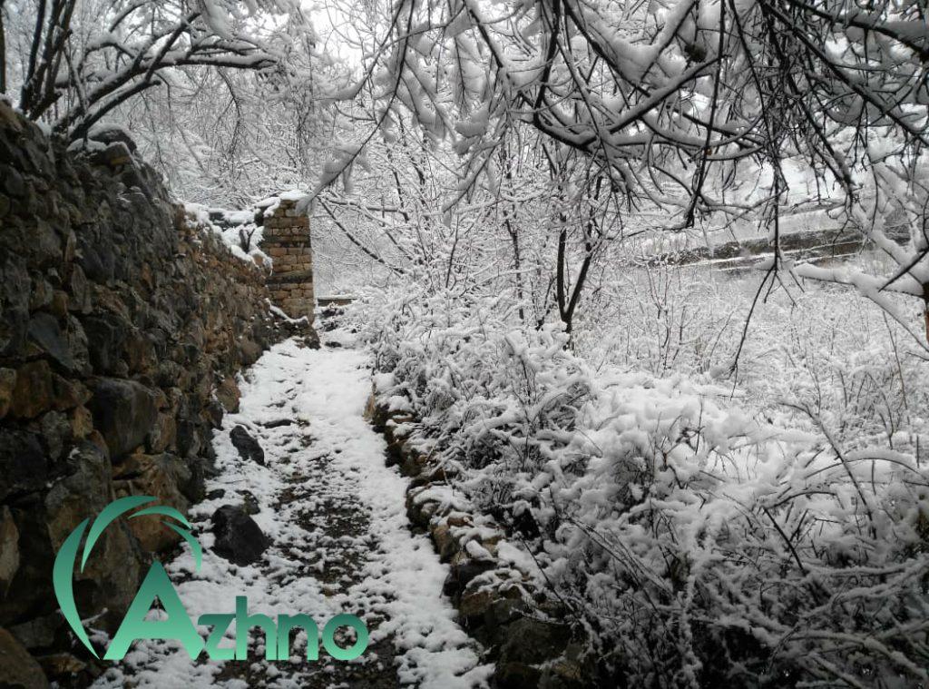 فروشگاه آژنو دام, طیور و آبزیان  Image of Photo 1604439026822 1024x759