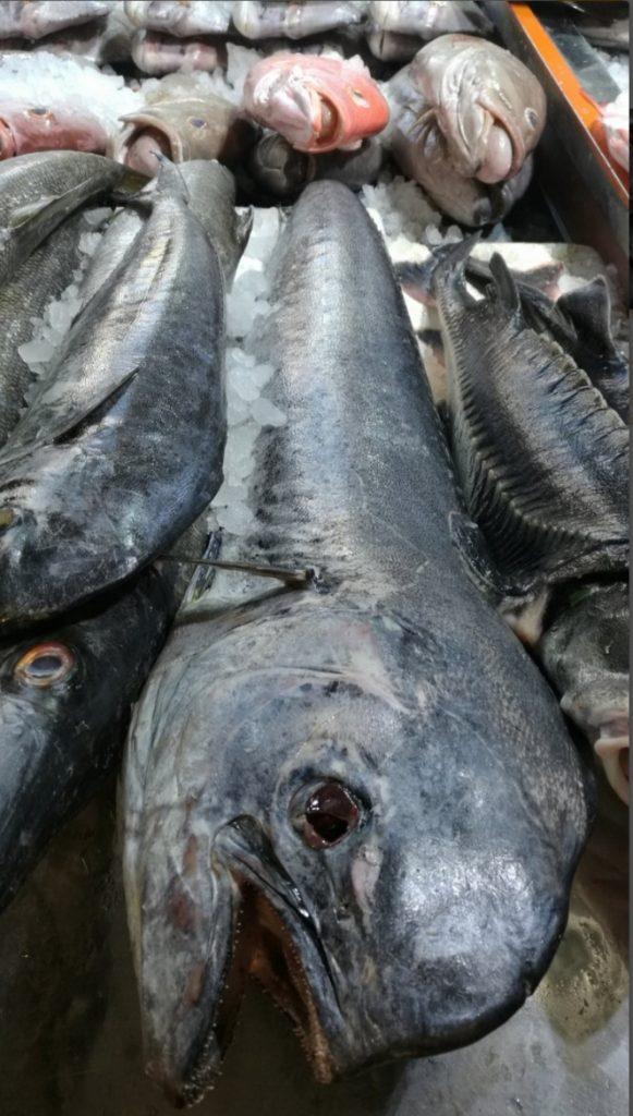 بازار بعثت،ماهی و آبزیان