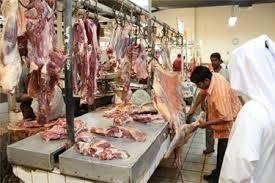 تولید گوشت قرمز در عربستان