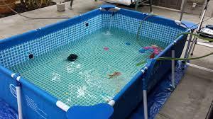 پرورش ماهی قزل الا در خانه