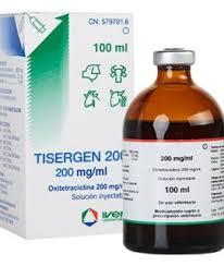 آنتی بیوتیک تایزرجن