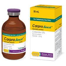 ضد التهاب کارپروجکت