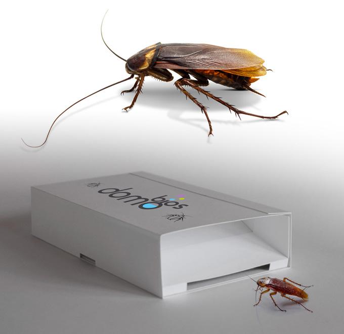 از بین بردن حشرات